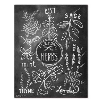 Culinary Herbs - Print