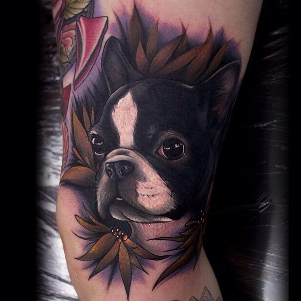 Boston Terrier Tattoo by Aimee Cornwell.
