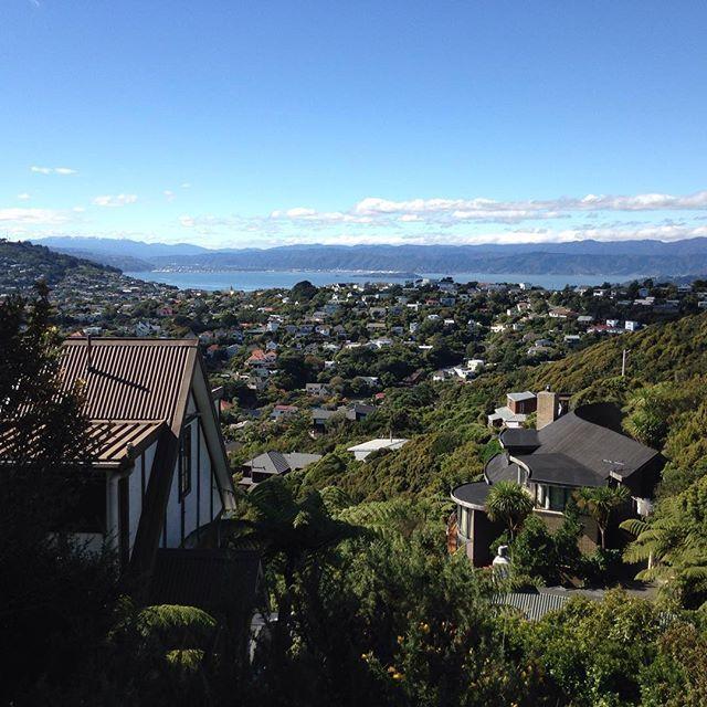 Goals   #Karori #WellingtonCity #NewZealand #itsTime2Go!