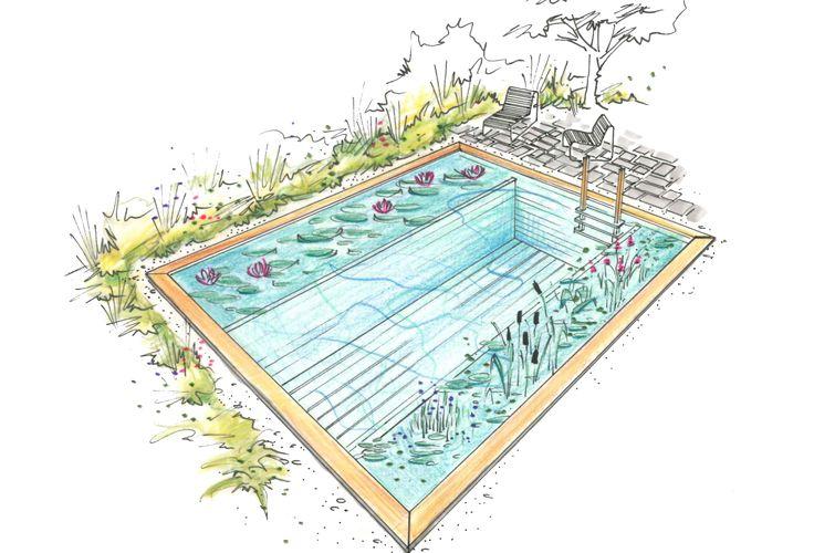 Die Kompaktbecken von Ecopool zeichnen sich dadurch aus, dass mit - reihenhausgarten und pool