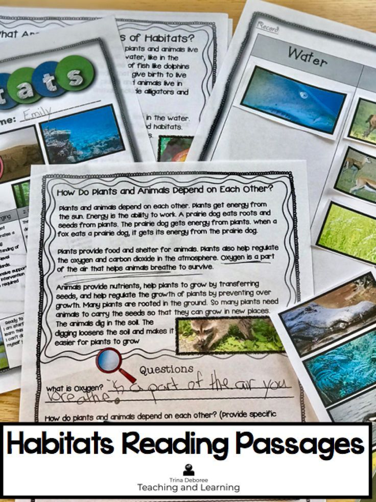 Habitats Science Reading Comprehension Passages 3rd Grade