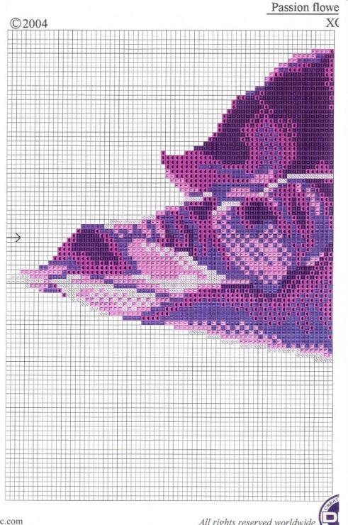 Flor lilas escuro 2