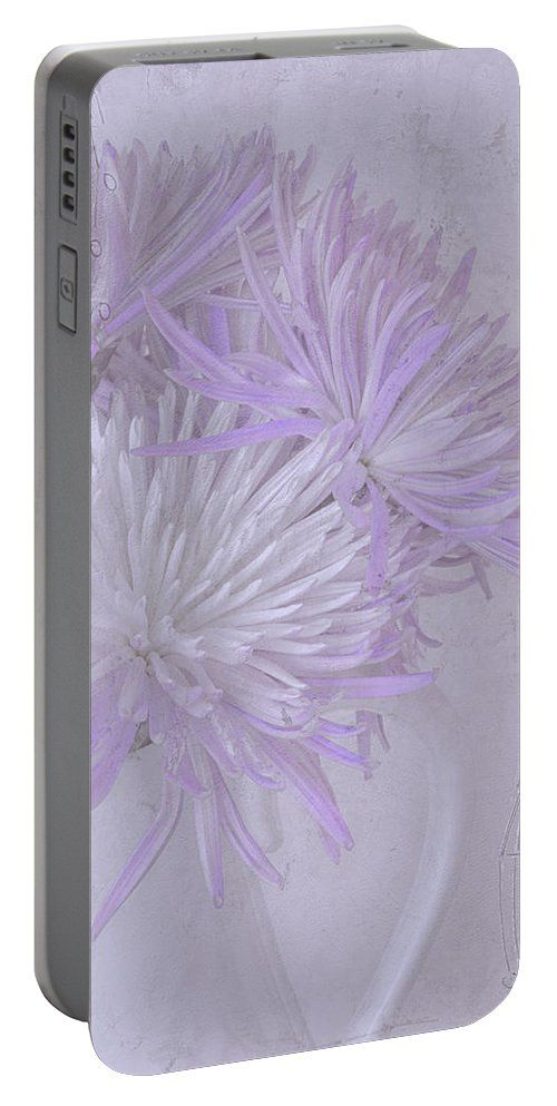 Mums Portable Battery Charger featuring the photograph Purple And White Mums by Sandra Foster