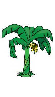how to draw a banana tree step 11 beautiful pinterest tutorials rh pinterest com  banana tree clipart