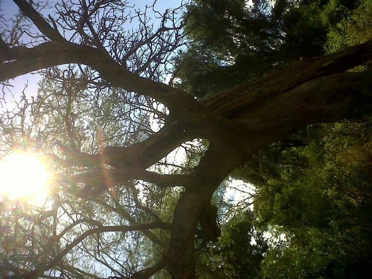 Side sun story
