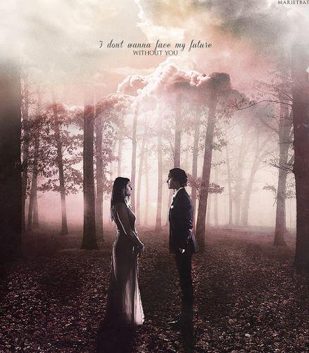 Delena - the-vampire-diaries-tv-show Fan Art