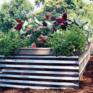 1000 images about raised beds on pinterest for Corrugated metal raised garden beds