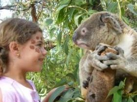 NSW Attractions