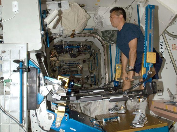 Allenamento con ARED - Eniscuola - Il dispositivo ARED utilizza la resistenza variabile di cilindri, regolabili con dei pistoni a vuoto. In questo modo si possono riprodurre gli esercizi con i pesi come se si fosse in gravità normale. Alcuni studi hanno dimostrato che, senza esercizi come quelli possibili con ARED, gli astronauti potrebbero perdere fino al 15% del loro volume muscolare, difficile o addirittura impossibile da riacquistare sulla Terra. Crediti: NASA