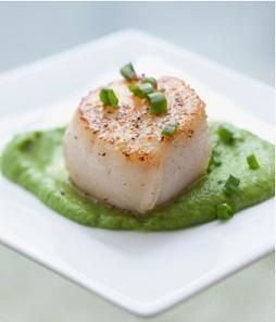 Seared Scallop with Port Wine Reduction. It looks deliciously amusing!