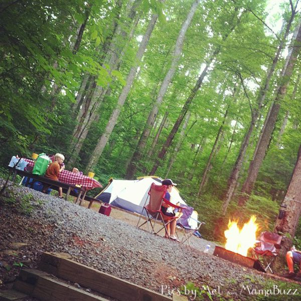 Camping at Cosby Campground in Great Smoky Mountain National Park #GSMNP #SmokyMountains #nationalpark #campsite
