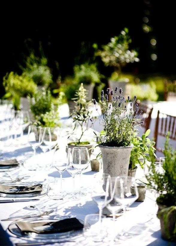 10 Unbelievably Creative Wedding Centerpiece Ideas: #9. Prettily Potted Herbs