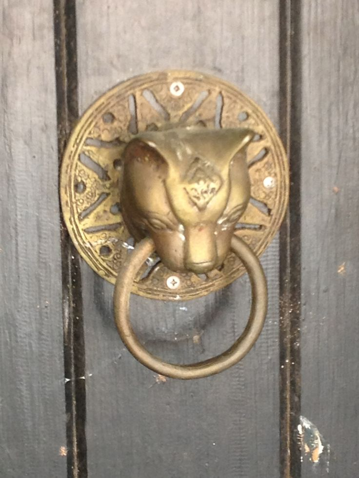 Feline Door Knocker Door Knobs Locks And Knockers