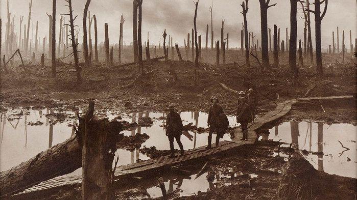 Gallipoli and World War I