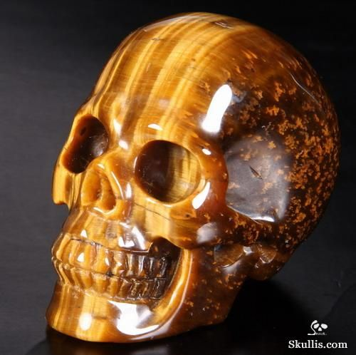 17 best images about skulls on