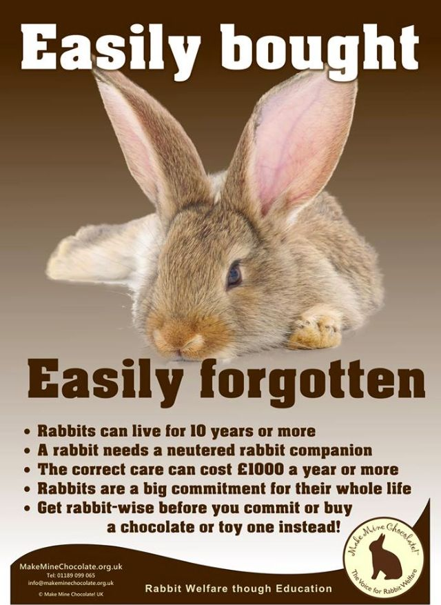 Poster by Make Mine Chocolate UK - rabbits are a commitment not a present!