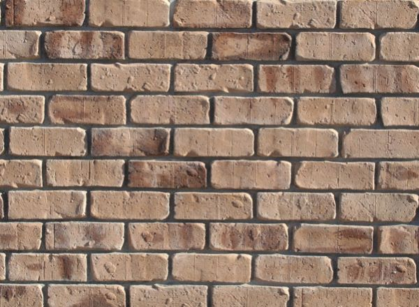 Tumbled Thin Brick Veneer (Color: Countryside)