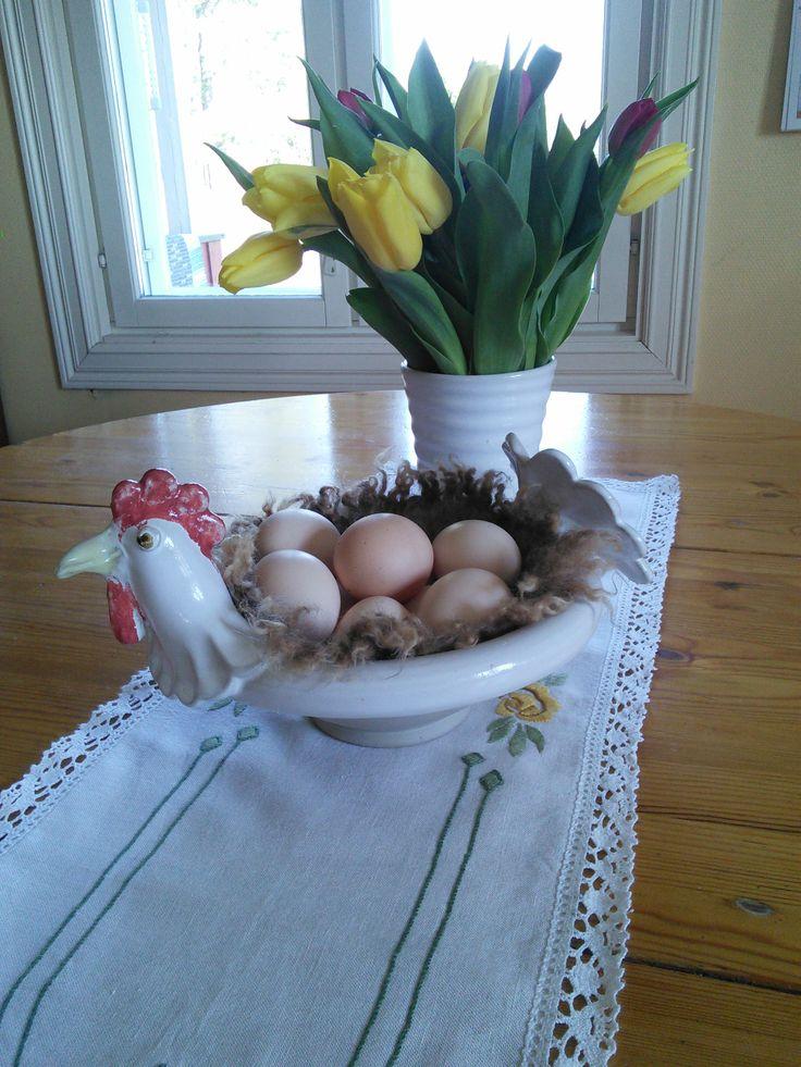 Easter egg hen
