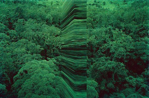 An image of greenwork, aerial wall by Rosemary Laing