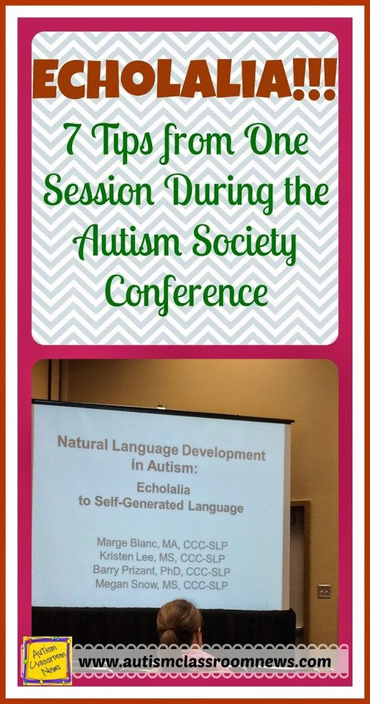 Echolalia: 7 Suggestions from One Session Through the Autism Society Convention