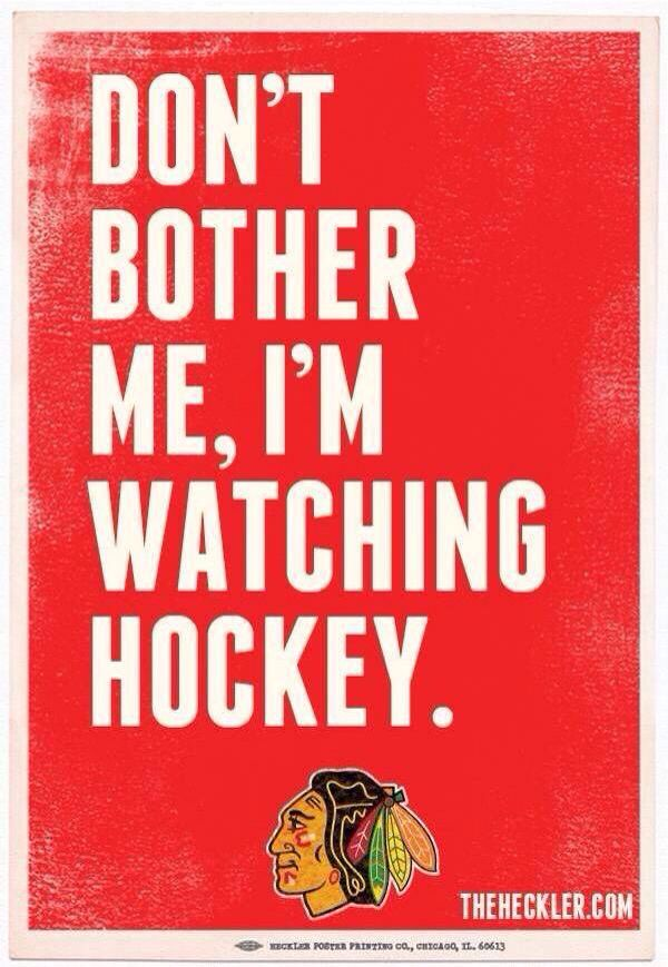 DON'T BOTHER ME, I'M WATCHING HOCKEY.