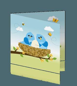 Vrolijk lente-zomer geboorte kaartje jongen met vogels in nest. geboortekaartjes voor een zoon