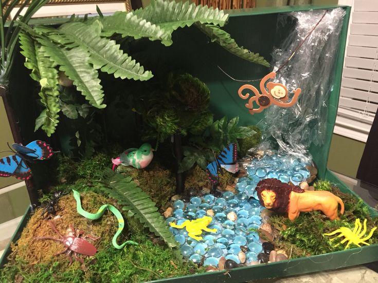 4th Grade Rainforest Ecosystem Shoebox Diorama Tropical Rainforest Diorama Rainforest
