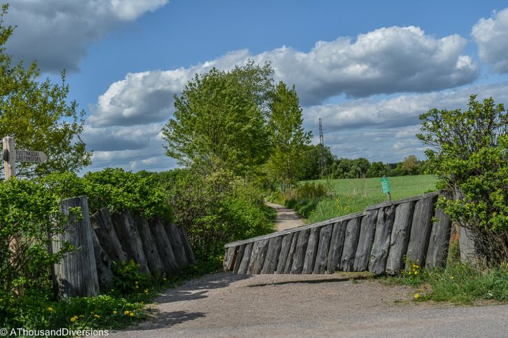 Haltiala Farm: A date with Finnish nature