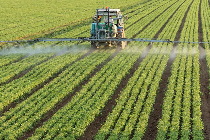 Scientists warn that humans have been depleting soil nutrients at rates that are orders of magnitude greater than our current ability to replenish it. They say that fixing this imbalance is critica…