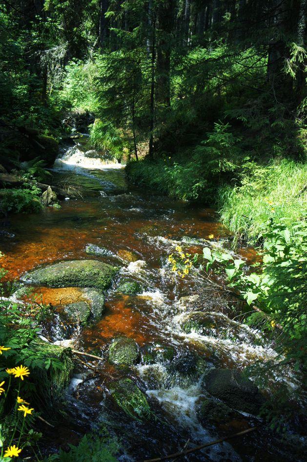 Šumava - Böhmerwald - Czech republic