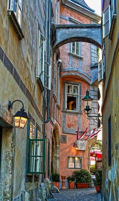 Alley in Vienna, Austria.                                      Photo by Daniel Schwabe on Flickr