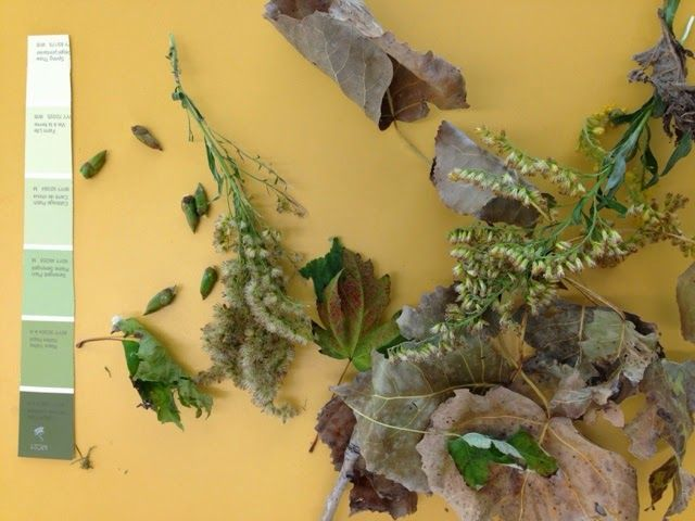 Playful Learning in the Early Years: Sorting Nature Items by Colour