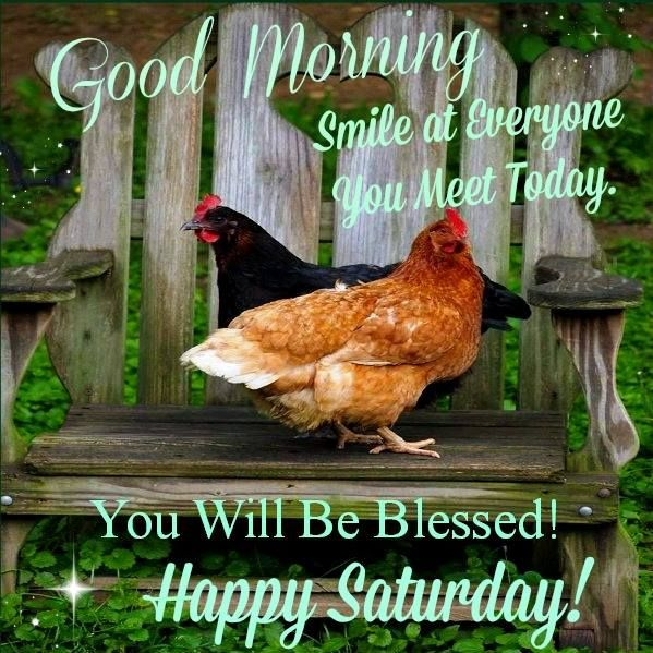 Good Morning Sunday Chicken : Best saturday blessings images on pinterest morning