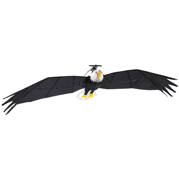 The 9 1/2 Foot Remote Controlled Bald Eagle - Hammacher Schlemmer - This is the remote controlled bald eagle with a 9 1/2' wingspan that catches the wind for broad, soaring turns.