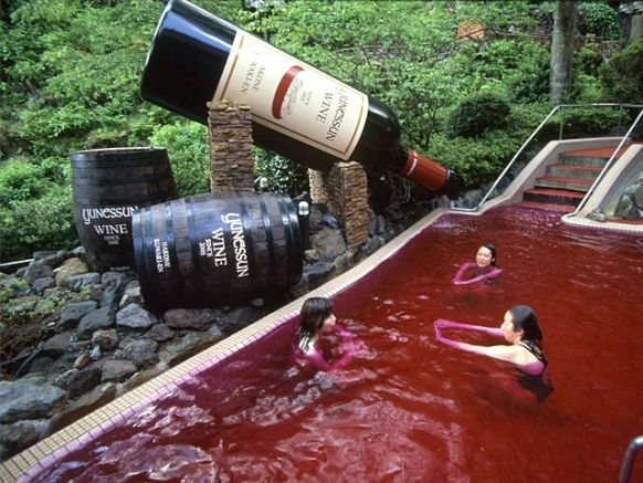 For Wine Lovers- Try Wine spa at Yunessun(amusement spa park) in Hakone, Japan