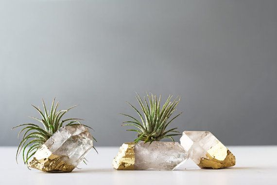 Air Plant Gold Dipped Quartz Crystal, Boho Decor, Desk Accessories, Air Plant, Christmas Gifts, Air Planter Gift, Air Plant Terrarium