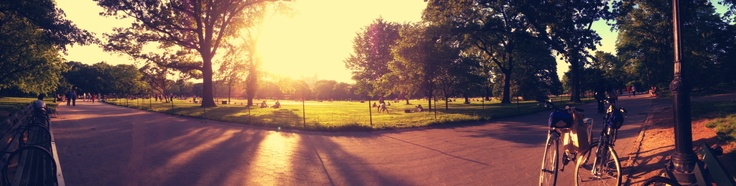 Central park- new york city