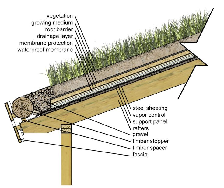 1000 Images About Sod Roof On Pinterest Green Roofs