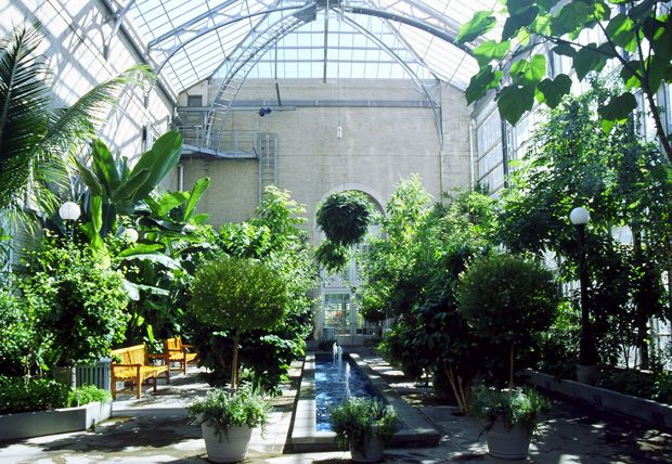 Botanical Garden In DC. They Had A Catwalk To Go On In The Jungle Section.  I Laid Down On A Bench And Listened To The Hubub. | Pinterest | Washington  Dc ...
