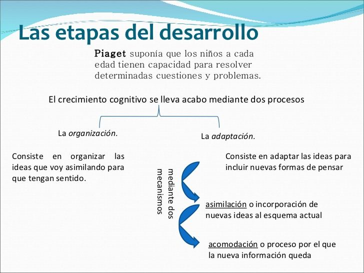 psicologia-evolutiva-2-728.jpg (728×546)