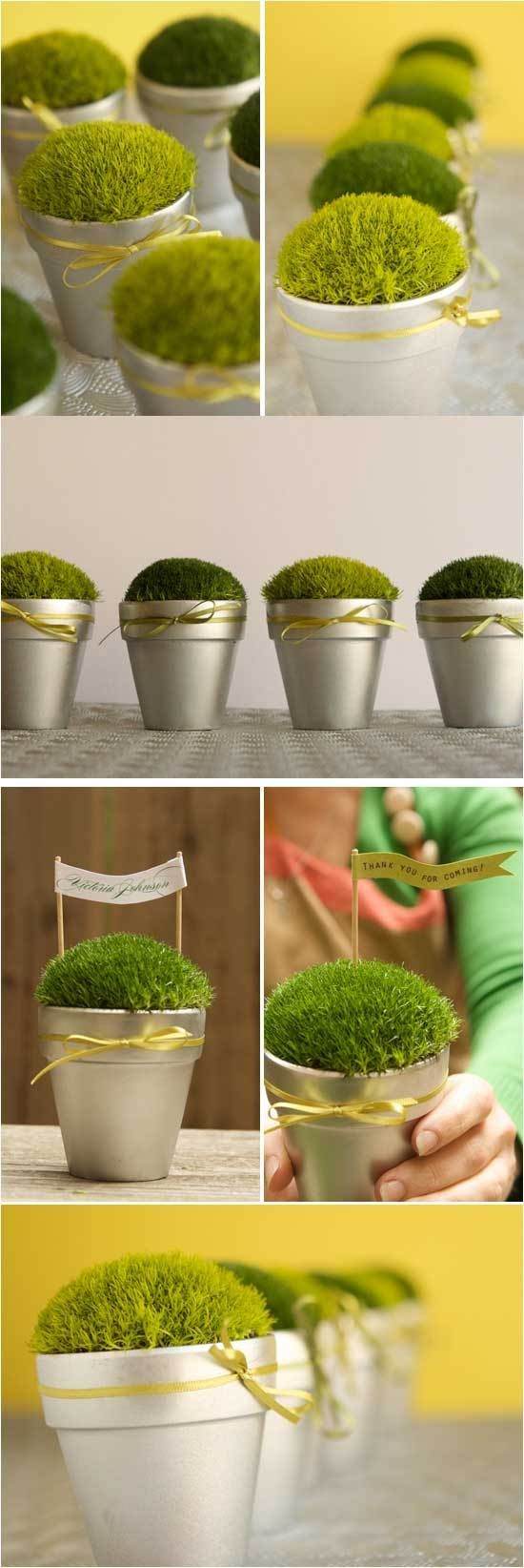 Small Pots of Moss for simple table décor and take-home favors - terra cotta pots, 25 pack tray of Irish Moss, and metallic spray paint (all available at Home Depot), cost less than $2 each to make