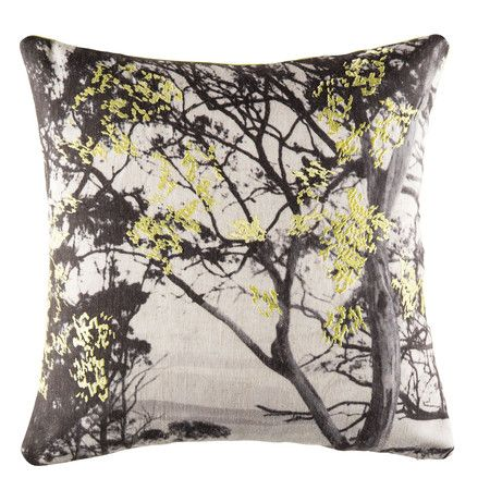 Found it at Temple & Webster - Tarkine Multi Square Cushion http://www.templeandwebster.com.au/daily-sales/p/Bedroom-Oasis-Tarkine-Multi-Square-Cushion~KASK1213~E9166.html?refid=SBP.yn2spFd43n61QHYsDUH5ArZkhfMwYECtlGFBAEpgybk