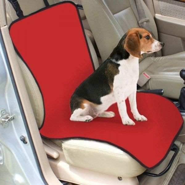 Single Pet Seat Cover For Your Car or Home from eFizzle