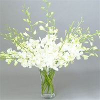 White flower long stem image collections flower decoration ideas white flower long stem choice image flower decoration ideas white flower long stem gallery flower decoration mightylinksfo