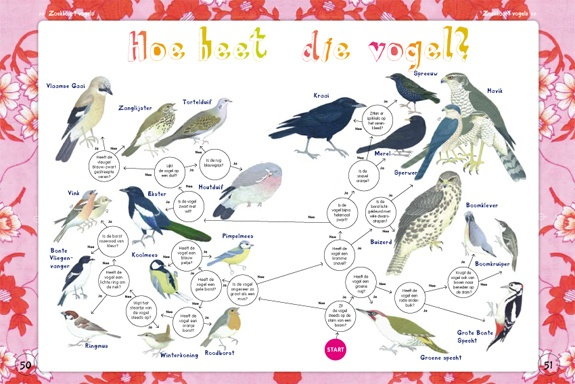Vogelkaart waar je mee op pad kan, want hoe heet die vogelijk eigenlijk?