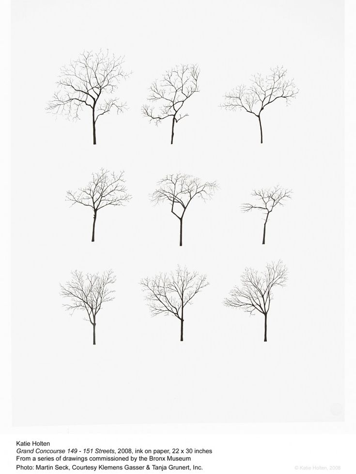 Architecture Drawing Of Trees 164 best entourage/staffazh images on pinterest | sketches