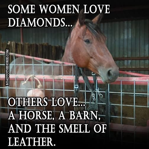 Best 25+ Horse Love Quotes Ideas On Pinterest
