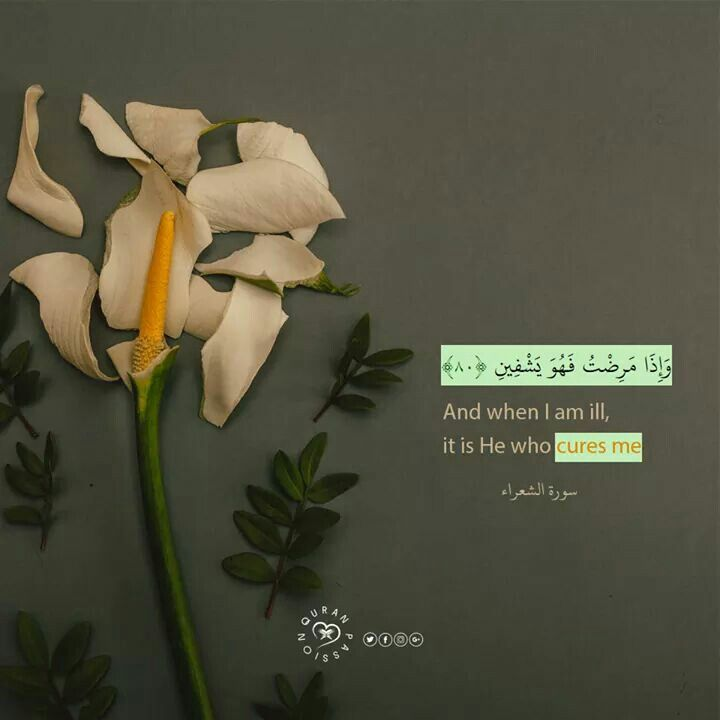 اللهم أشفي كل مريض أنهكه المرض ولا يشعر به إلا أنت اللهم أنت الشافي فليس بعدك شفاء وأنت المداوي فليس بعدك دواء فأشفي وداوي كل مريض The Cure Quran Verses Quran