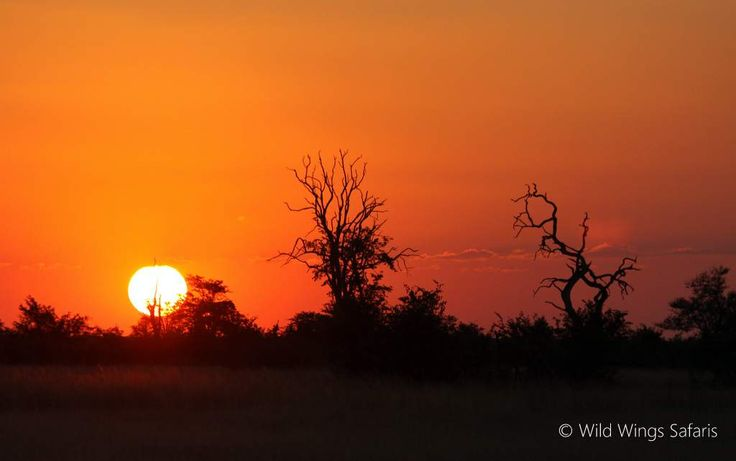 Another awe-filled African sunset - @ #Hwange National Park