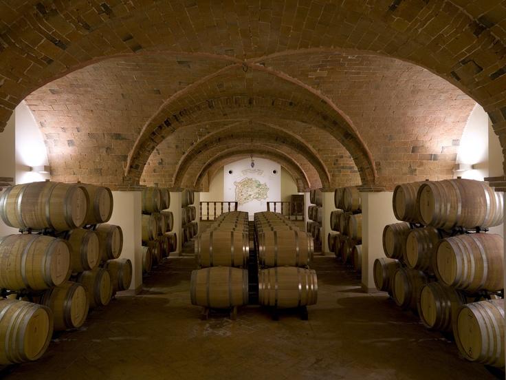 La barriccaia dell'azienda vinicola Marchesi Ginori Lisci